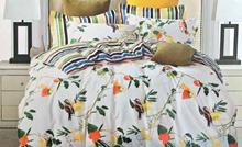 תמונה של סט ביוטי 100% כותנה מיטה זוגית 4 חלקים רחב    2087